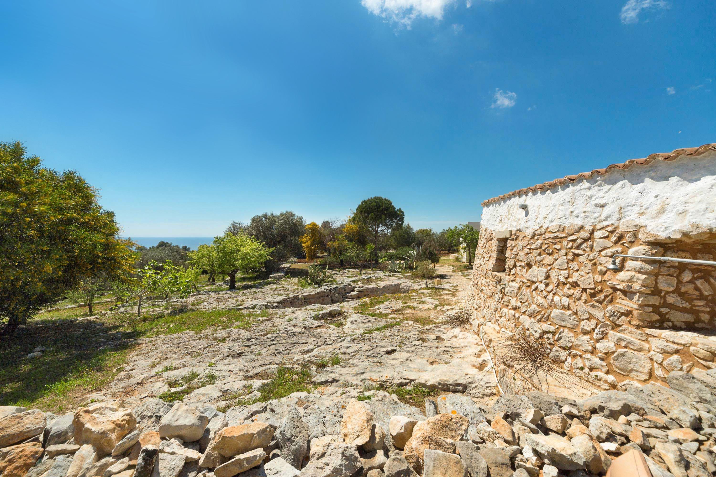 I muretti a secco patrimonio dell`umanità. Lo dice L`Unesco