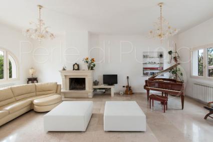 Il grande salone con caminetto, tv e strumenti musicali