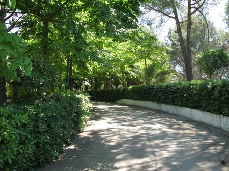 villas et fermes - Matino ( Gallipoli ) - Villa delle Palme
