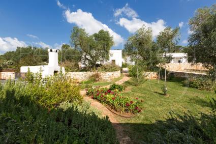 Giardino con piante aromatiche e mediterranee