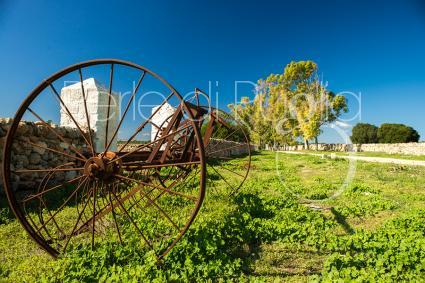 prestige boerderijen - Urmo Belsito ( Taranto ) - Masseria La Scalella