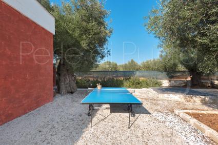 Presente il tavolo da ping pong per lo svago in vacanza