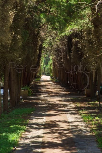 ville e casali - Lequile ( Lecce ) - Villa Pignatelli