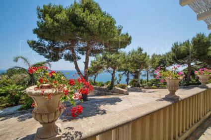 Le tinte vivaci dei gerani sul blu del mare Ionio