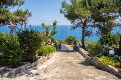 Il viale di accesso alla villa, con meravigliosa vista mare