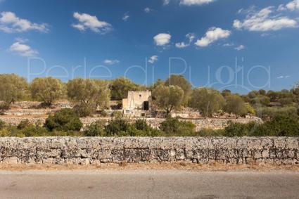 maisons typiques - Santa Maria di Leuca ( Leuca ) - Lamia delle Libellule
