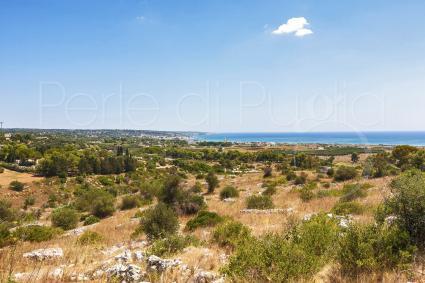 La vista sulle spiagge e sul mare del Salento, dalla collinetta di Pescoluse