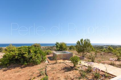 Cool off in the small pool overlooking the sea during your villa holidays in Puglia