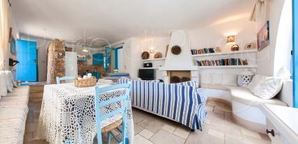 La casa principale si apre su ampio soggiorno con caminetto e libreria