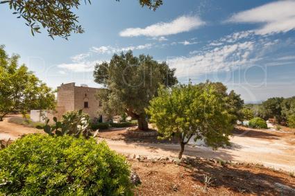 Il verde rigoglioso delle essenze mediterranee avvolge la villa
