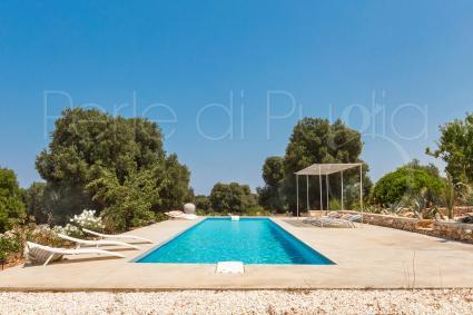 La moderna piscina con solarium ha come sfondo un verde uliveto