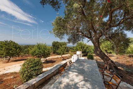 Si può pranzare all`ombra del giardino tra i profumi del Mediterraneo