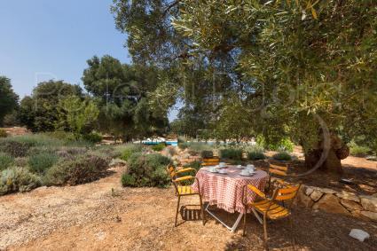 La colazione all`ombra si può fare all`aperto, al fresco del giardino