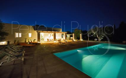 A nice pool party and a barbecue with friends, or a swim: unforgettable nights