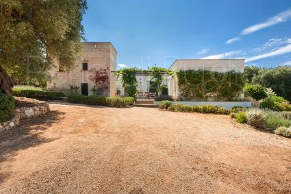 trulli e typical houses - Carovigno ( Brindisi ) - Torre Uliveto (3 bedrooms)