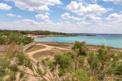 The sea of Punta Castiglione