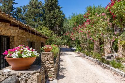 Villa Petrosa (Dependance)