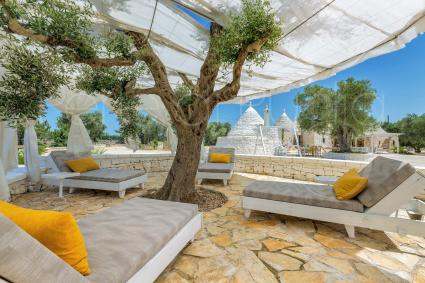 Beach beds under the olive trees