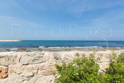 ville vacanze - Ostuni ( Brindisi ) - Lo Scoglio Bianco