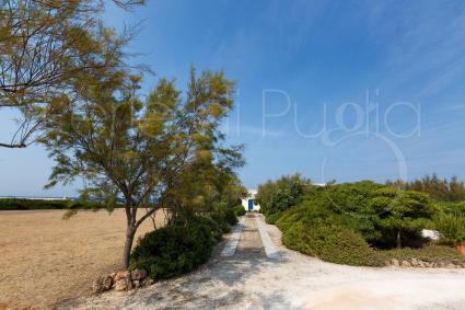 Il viale d`ingresso porta alla casa esclusiva per vacanze in Puglia