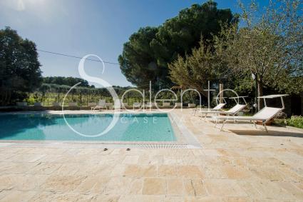 The pool with solarium