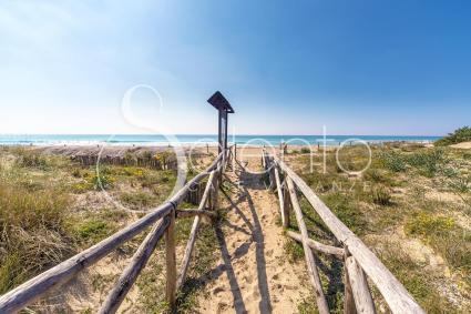 La passerella in legno di fronte alla villetta porta sulla spiaggia