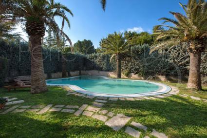 Il relax all`ombra delle splendide palme