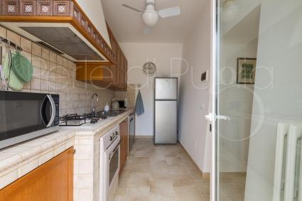 Well-equipped kitchen with microwave oven and dishwasher
