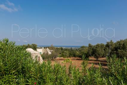 Splendida vista mare, da cartolina, sulle spiagge dell`Adriatico