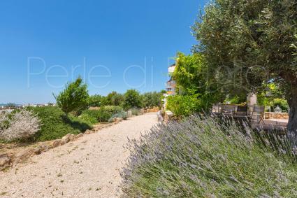 trulli e typical houses - Torre Ovo ( Taranto ) - Villa La Samia
