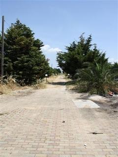 villas et fermes - Portoselvaggio (Nardò) ( Gallipoli ) - Villetta Sonia