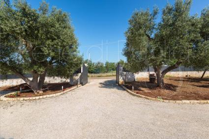 Villen - Carovigno ( Brindisi ) - Villa Specchia