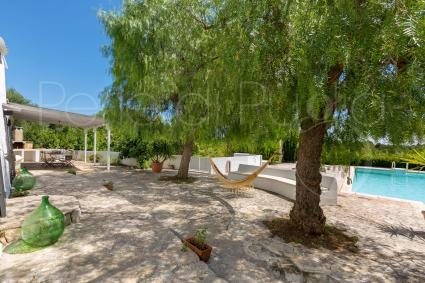 The hammocks under the olive trees