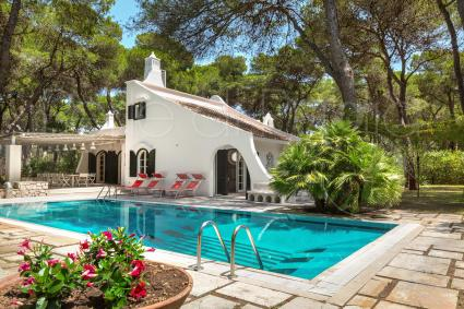 Luxury villa with pool in the pine forest on the coast