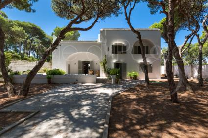The Mediterranean villa is in a pine forest