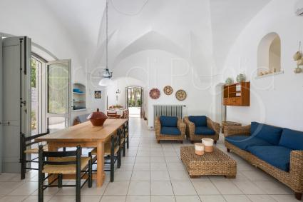 Living room under star-vaulted ceiling