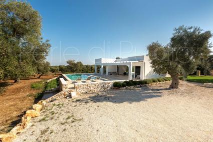 La villa vacanze in affitto è immersa negli uliveti della bassa Valle d`Itria