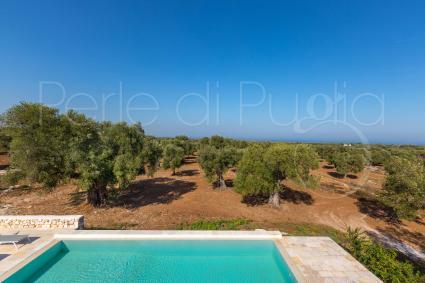 Dalla terrazza della villa si vede il Mar Adriatico