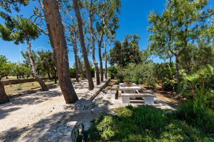 Holiday Villas - Carovigno ( Brindisi ) - Villa Thea Charming House