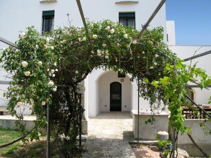 ville e casali - Casarano ( Gallipoli ) - Casale Pioppi