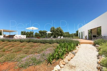 It`s surrounded by the garden with olive trees