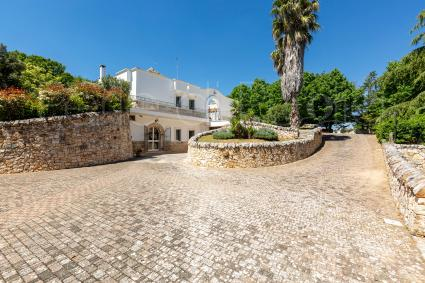 Holiday Villas - Martina Franca ( Brindisi ) - Villa Virgilia