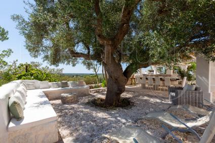 fermes de prestige - Ostuni ( Brindisi ) - Masseria Monte Torto