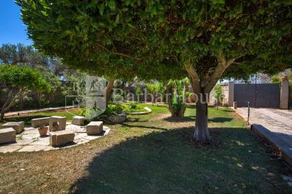 fermes de prestige - Sternatia - Soleto - Corigliano ( Otranto ) - Masseria Fanelli