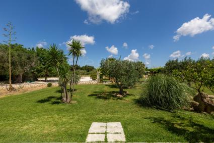 luxury villas - Mesagne ( Brindisi ) - Tenuta Donna Caterina