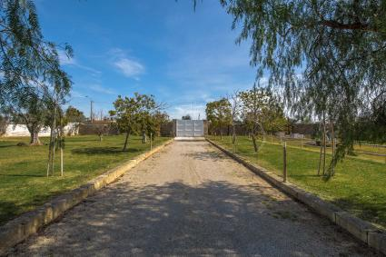 Il lungo viale porta alla villa con piscina