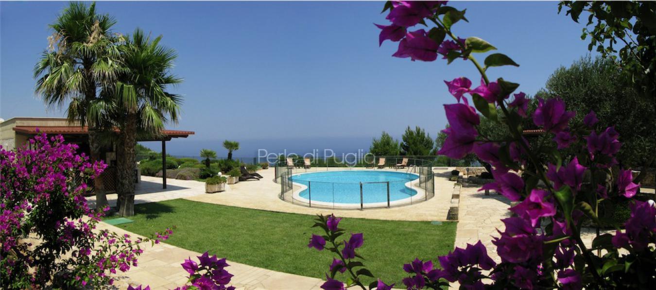 Villa fico d india villa di lusso con piscina in santa - Villa con piscina santa maria di leuca ...
