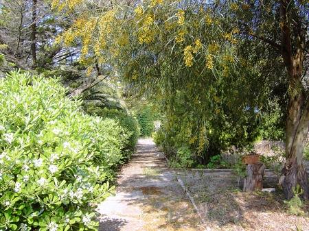 ville e casali - Lindinuso ( Lecce ) - Masseria Villa Antonietta